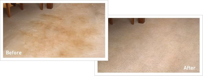 Make Carpets Look New Again + Home Made Carpet Cleaning Solution